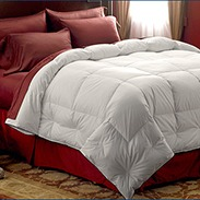 Pacific Coast Extra Warmth Comforter Buyer Reviews