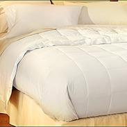 Pacific Coast Hotel Down Blanket Buyer Reviews