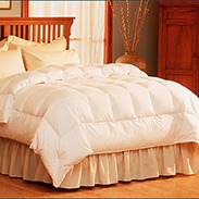 Pacific Coast Light Warmth Down Comforter Buyer Reviews