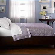 Pacific Coast Luxury Down Blanket Reviews