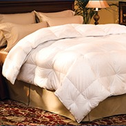 Pacific Coast Luxury Down Comforter Customer Reviews