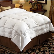 Pacific Coast Stratus Down Comforter Buyer Reviews
