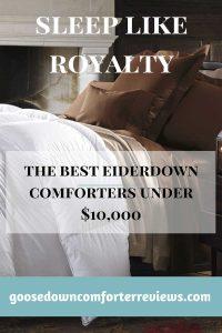 The best eiderdown comforters under $10,000