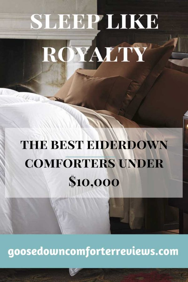 Get the most sought after comforter in the world for less than $10000