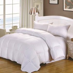 Cozy Feather All Season Down Comforter
