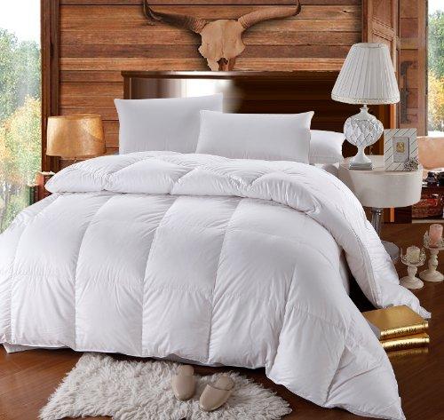 Best Alternative Goose Down Comforter Reviews
