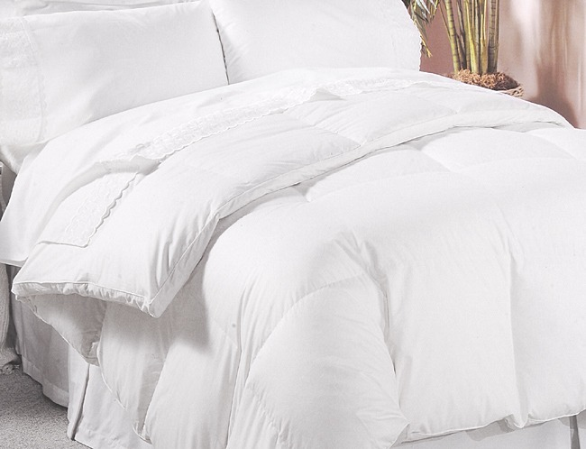 cotton solid dp white com home comforter size count down amazon tc thread percent queen kitchen